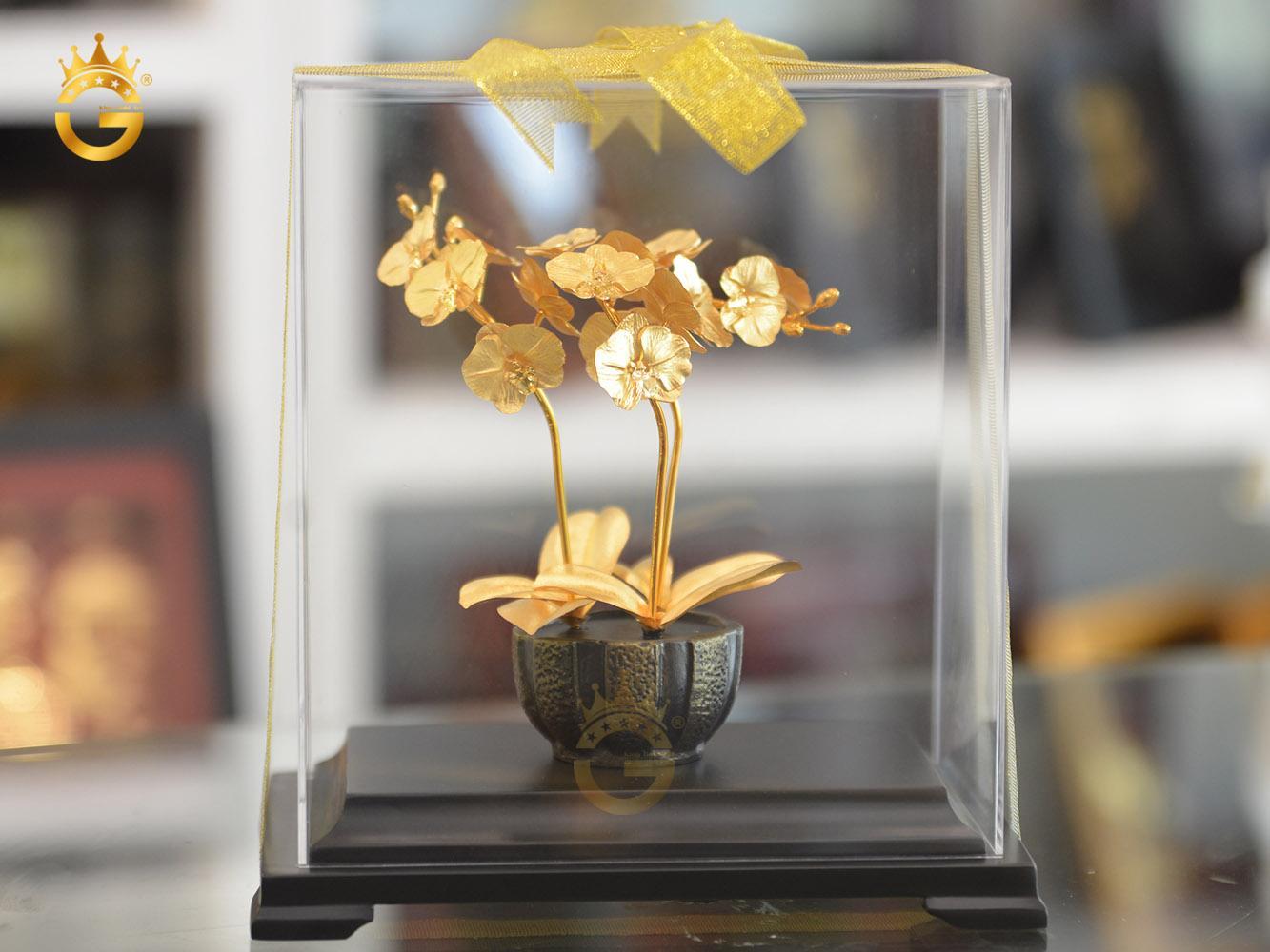 Quà vàng cao cấp, chậu hoa lan hồ điệp dát vàng 24k đẹp tinh xảo